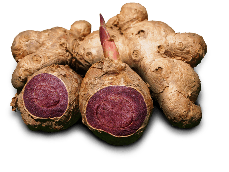 Fresh Black Ginger