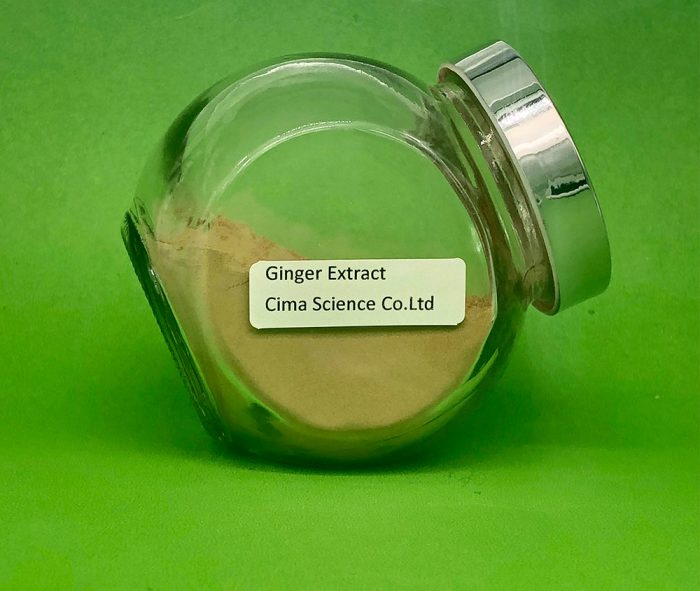 Ginger extract powder 5% gingerols