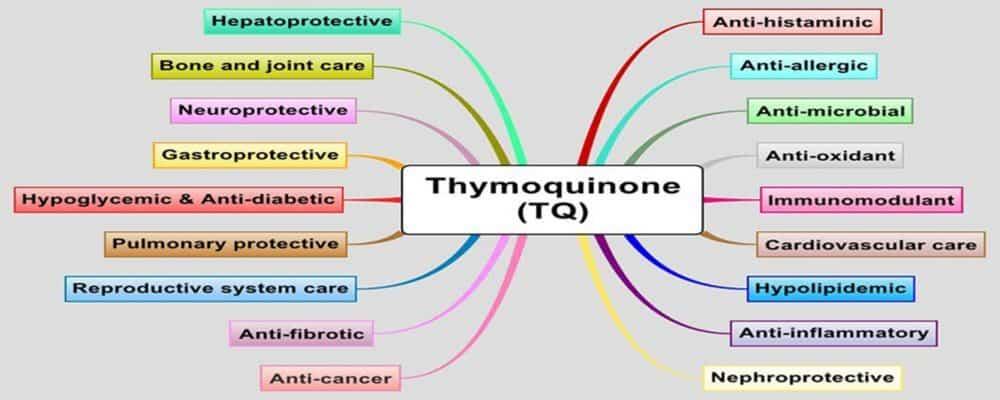 Thymoquinone benefits
