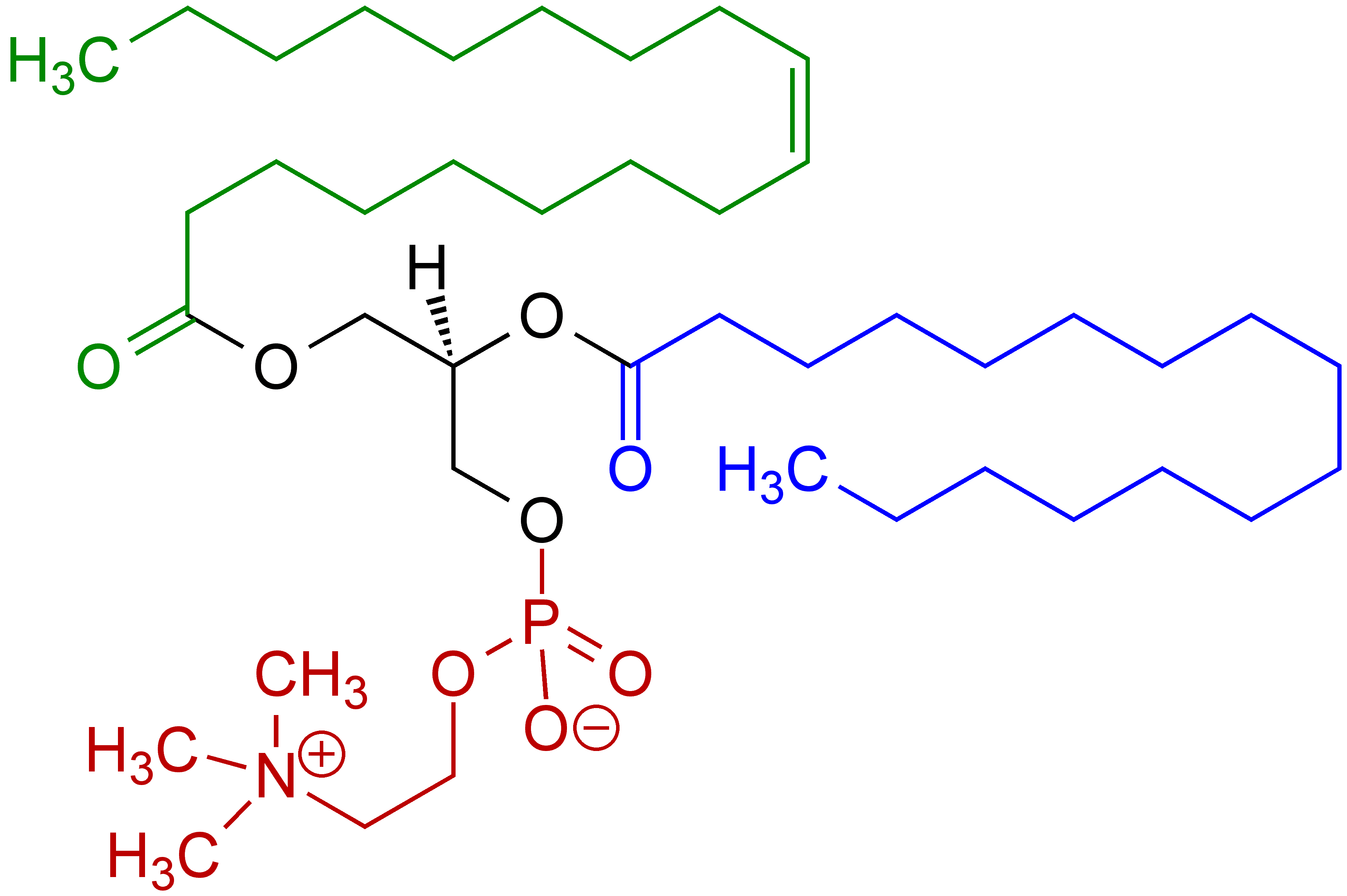 chemical structure of Phosphatidylcholine