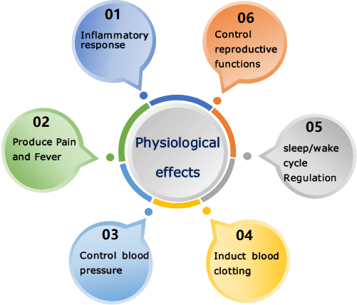 Prostaglandins Physiological effects