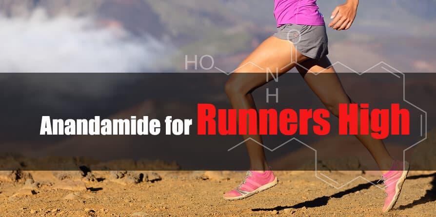 Anandamide runners high