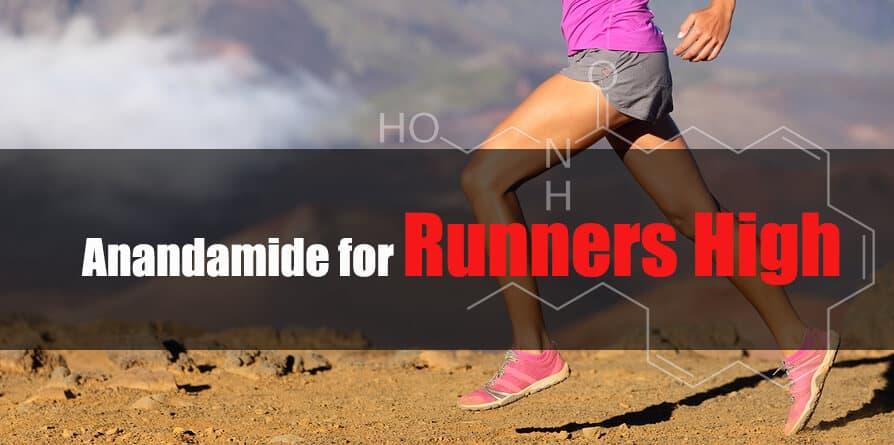 Anandamide runners high