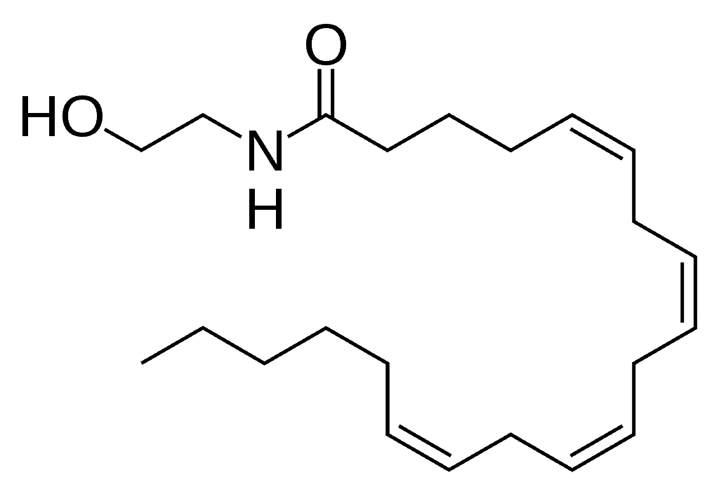 Anandamide structure
