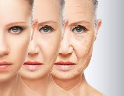 Anti-free radical; anti-aging; anti-oxidation