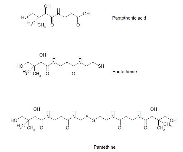Pantethine structure comparison with pantetheine and pantothenic acid