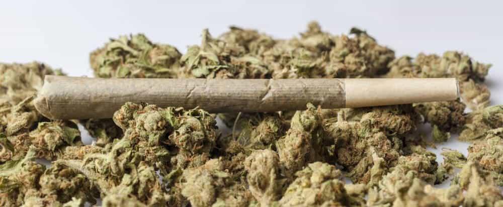 marijuana smoke cigarette