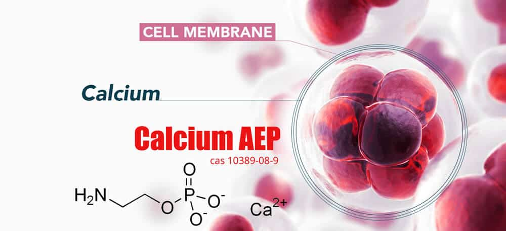Mechanism of action of Calcium AEP and cell mebrane