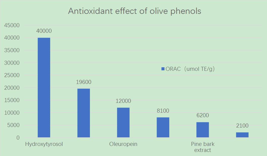 Antioxidant effects of olive phenols