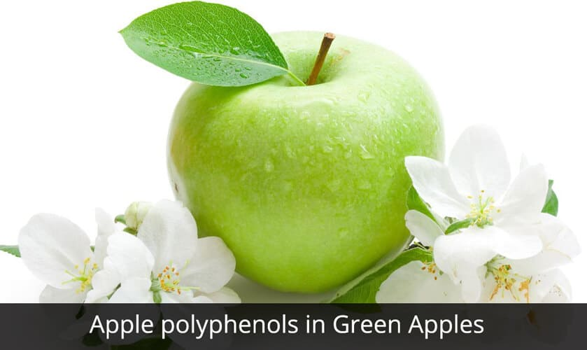 Apple Polyphenols in Green Apples