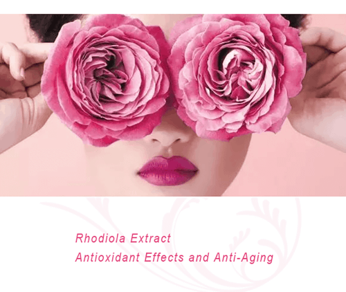 Rhodiola for Antioxidant Effects and Anti-Aging