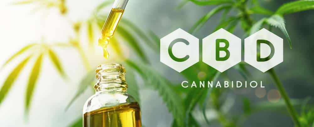 bulk cbd oil and anandamide powder