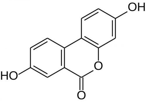 Urolithin A molecular structure