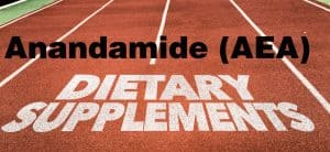 Anandamide supplements
