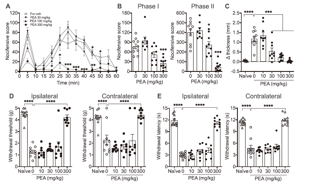 Effects of a single dose of PEA on formalin-evoked acute and persistent nociceptive behaviors